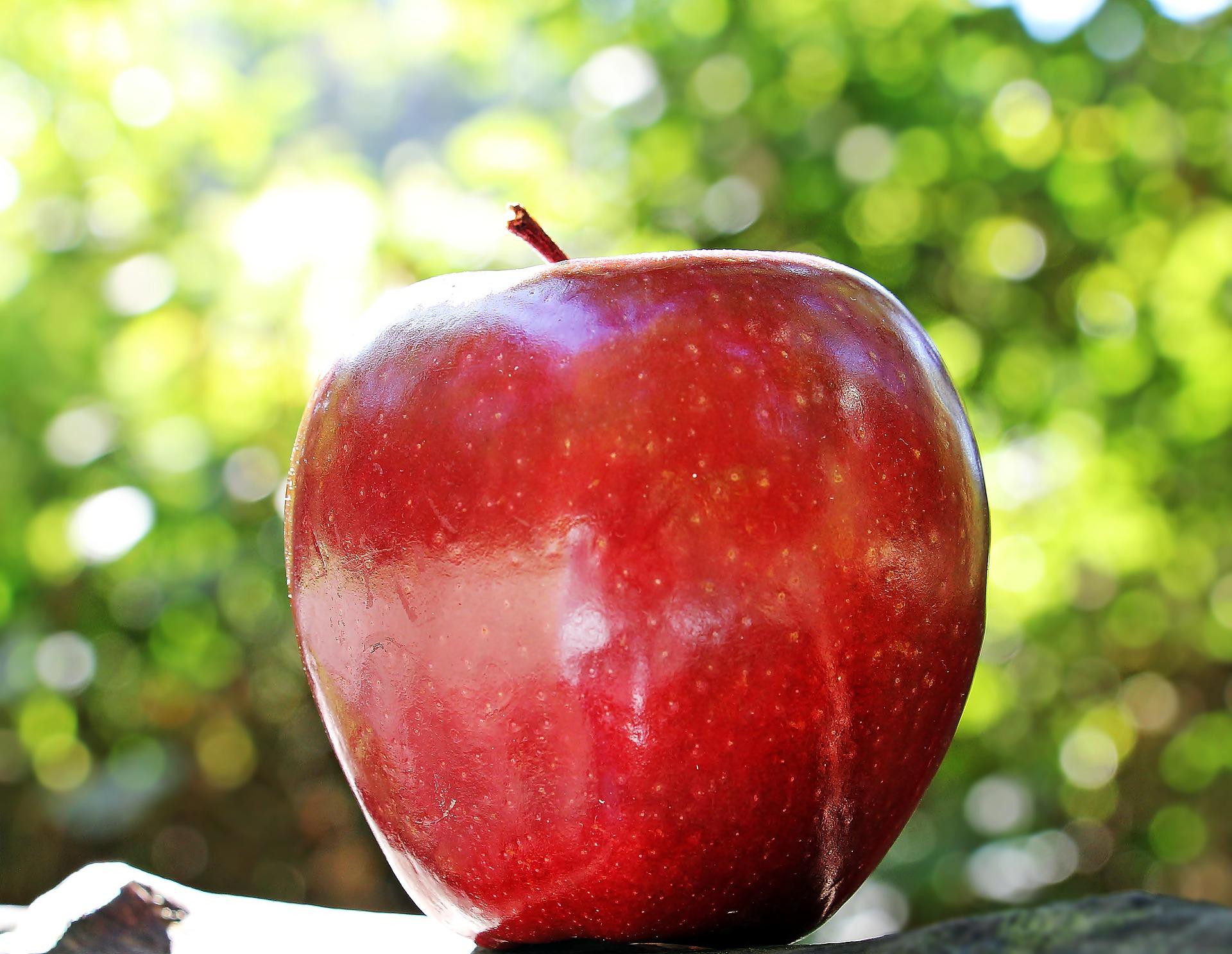 здрав-ябълка